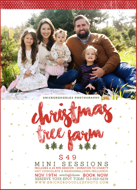 Christmas Tree Farm Mini Sessions.Christmas Tree Farm Mini Sessions Cincinnati Child